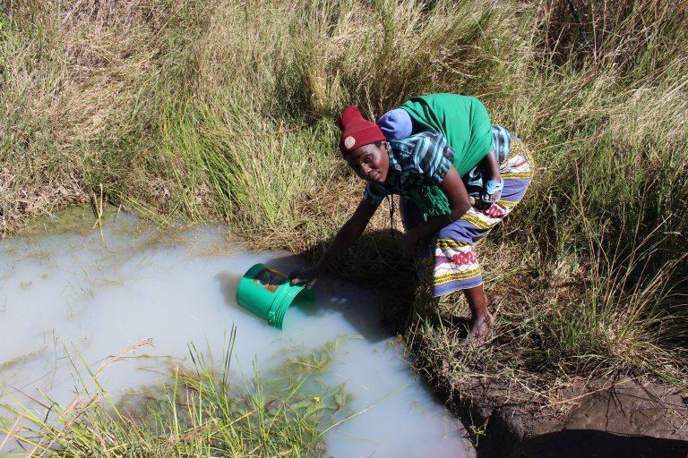 Woman gathering water